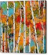 Middle Mountain Aspens Canvas Print