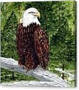 Mom Decorah Canvas Print