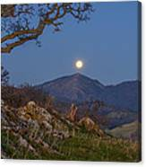 Moon Over Mt Diablo Canvas Print
