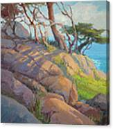 Morning Light At Point Lobos Canvas Print