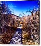 Mountain Creek Path-sundance Utah Canvas Print
