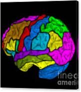 Mri Of Normal Brain Canvas Print