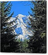 Mt. Rainier I Canvas Print