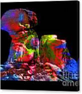 Mushroom Rock Canvas Print
