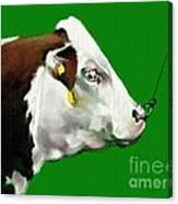 My Favorite Bull Canvas Print