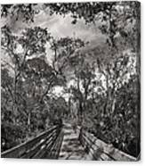 Nature Preserve Canvas Print