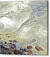 Natures Art Canvas Print