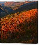 Nature's Color Palette Canvas Print