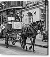 New Orleans - Carriage Ride Bw Canvas Print