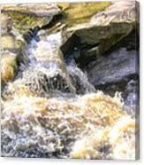 Niagara Escarpment 2 Canvas Print