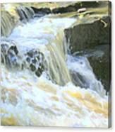 Niagara Escarpment 4 Canvas Print