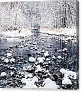 Nine Mile Creek Canvas Print