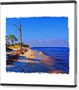 North Florida Beach Canvas Print
