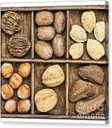Nuts In Rustic Wooden Box Canvas Print