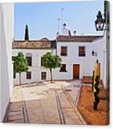 Old Town In Cordoba Canvas Print