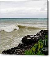On Shore Canvas Print
