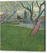 Orchards In Blossom Canvas Print