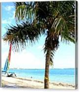 Palm Tree And Sailboat Canvas Print