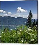 Panoramic View Canvas Print