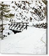 Pathway Through The Snow Canvas Print