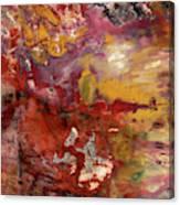 Petrified Wood Detail Canvas Print