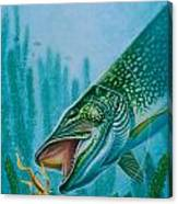 Pike And Jig Canvas Print