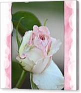 Pink Lady 2013 Canvas Print