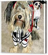 Pirate Dogs Canvas Print