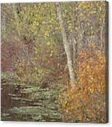 Pondside Pastel Canvas Print