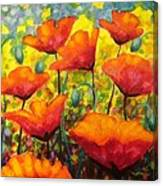 Poppy Corner Canvas Print