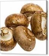 Portobello Mushrooms Canvas Print