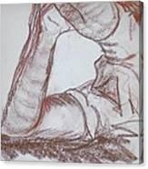Posed Canvas Print