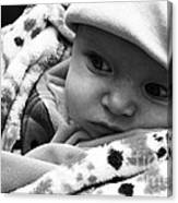 Presious Baby Canvas Print
