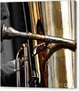 Profile In Tuba Canvas Print