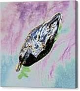 Psychedelic Mallard Duck 2 Canvas Print