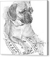 Puppy On A Blanket Pencil Portrait Canvas Print