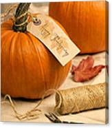 Pumpkins For Thanksgiving Canvas Print