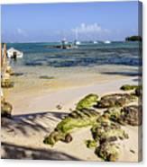 Punta Cana Beach Canvas Print