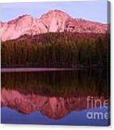 Purple Reflections Canvas Print