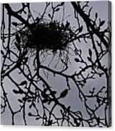 Put A Bird In It I Canvas Print