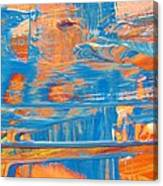 Raggaemylitis Canvas Print