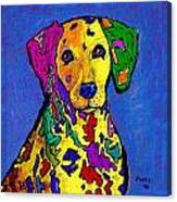 Rainbow Dalmatian Canvas Print