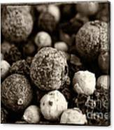Rainbow Peppercorn Macro Canvas Print