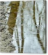 Raindrops On Reflections II Canvas Print
