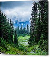 Rainer Glacial Meadow Canvas Print