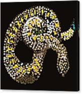 Rattlesnake Bedazzled Canvas Print