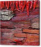 Red Chillies On Rustic Background Canvas Print