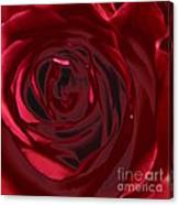 Red Rose Abstract 2 Canvas Print