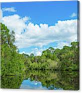 Reflection Of Trees And Clouds In South Canvas Print