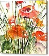Renoncules Canvas Print